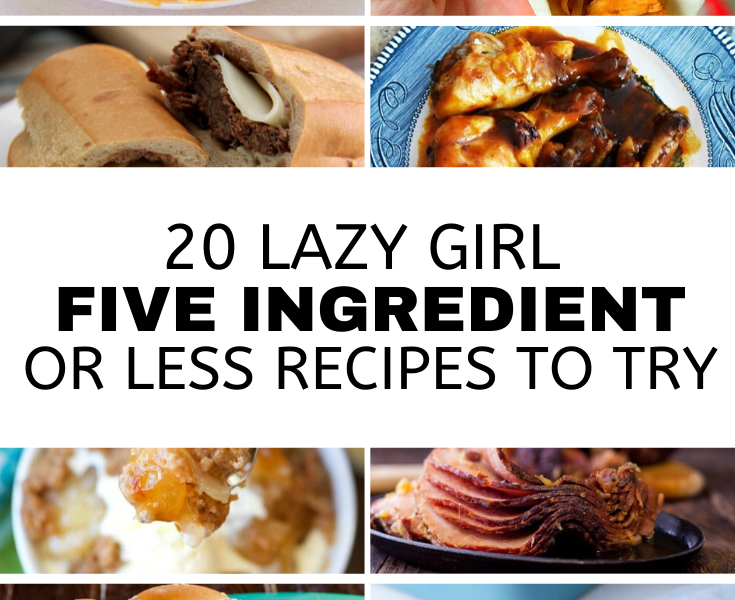 Lazy Girl: 5 Ingredient or Less Recipes