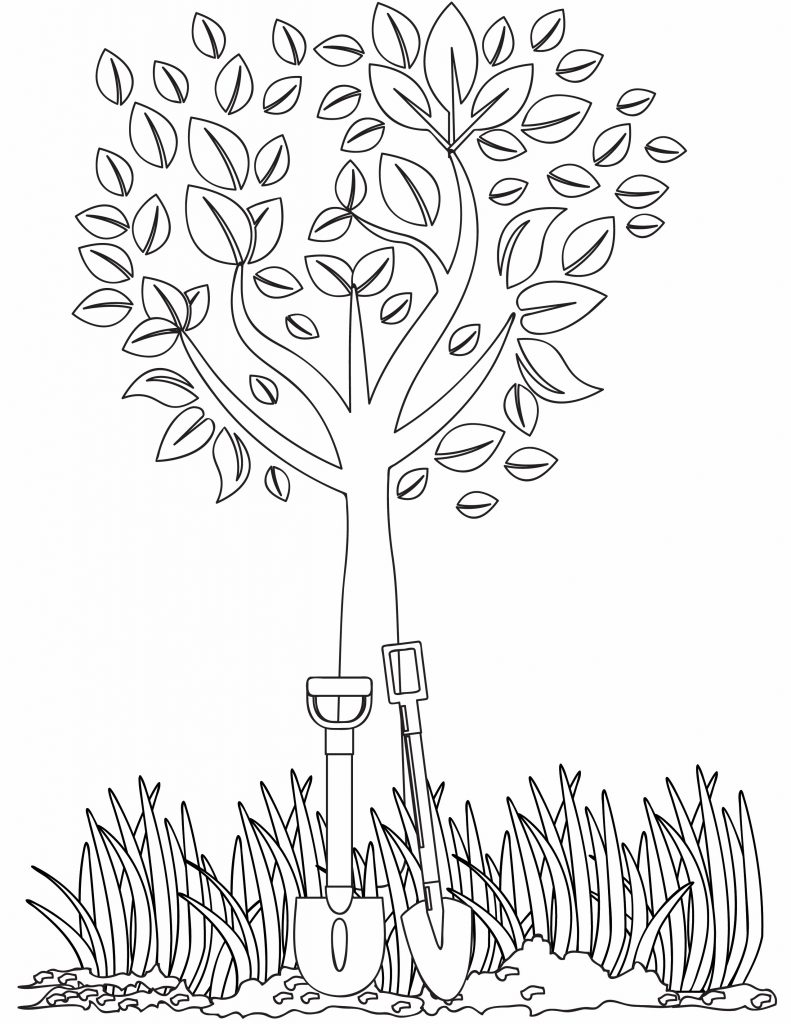 a tree surrounded by grass and two shovels leaning on it
