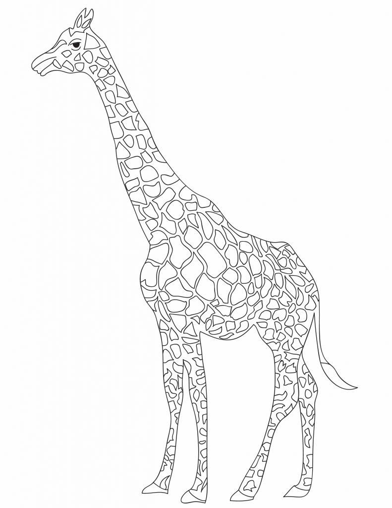 a giraffe for fun printables for kids