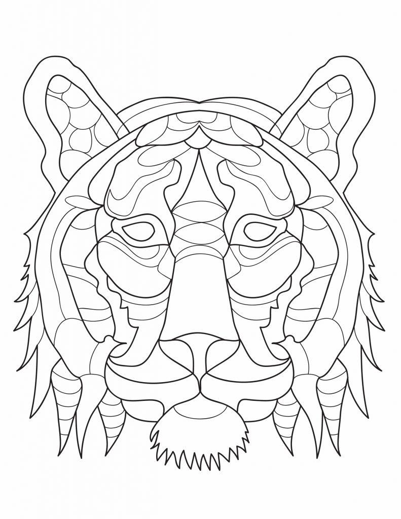 a face of a lion