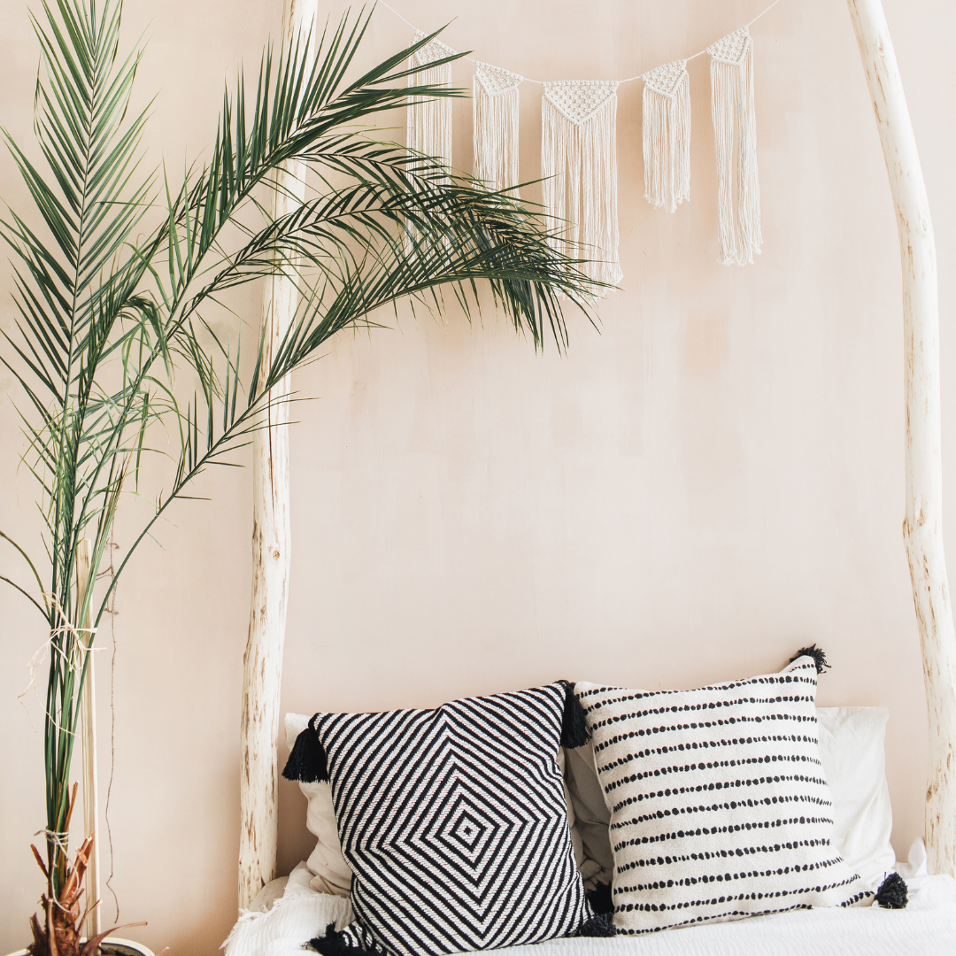 Minimalist bohemian living room  with indoor plants and pillowcases